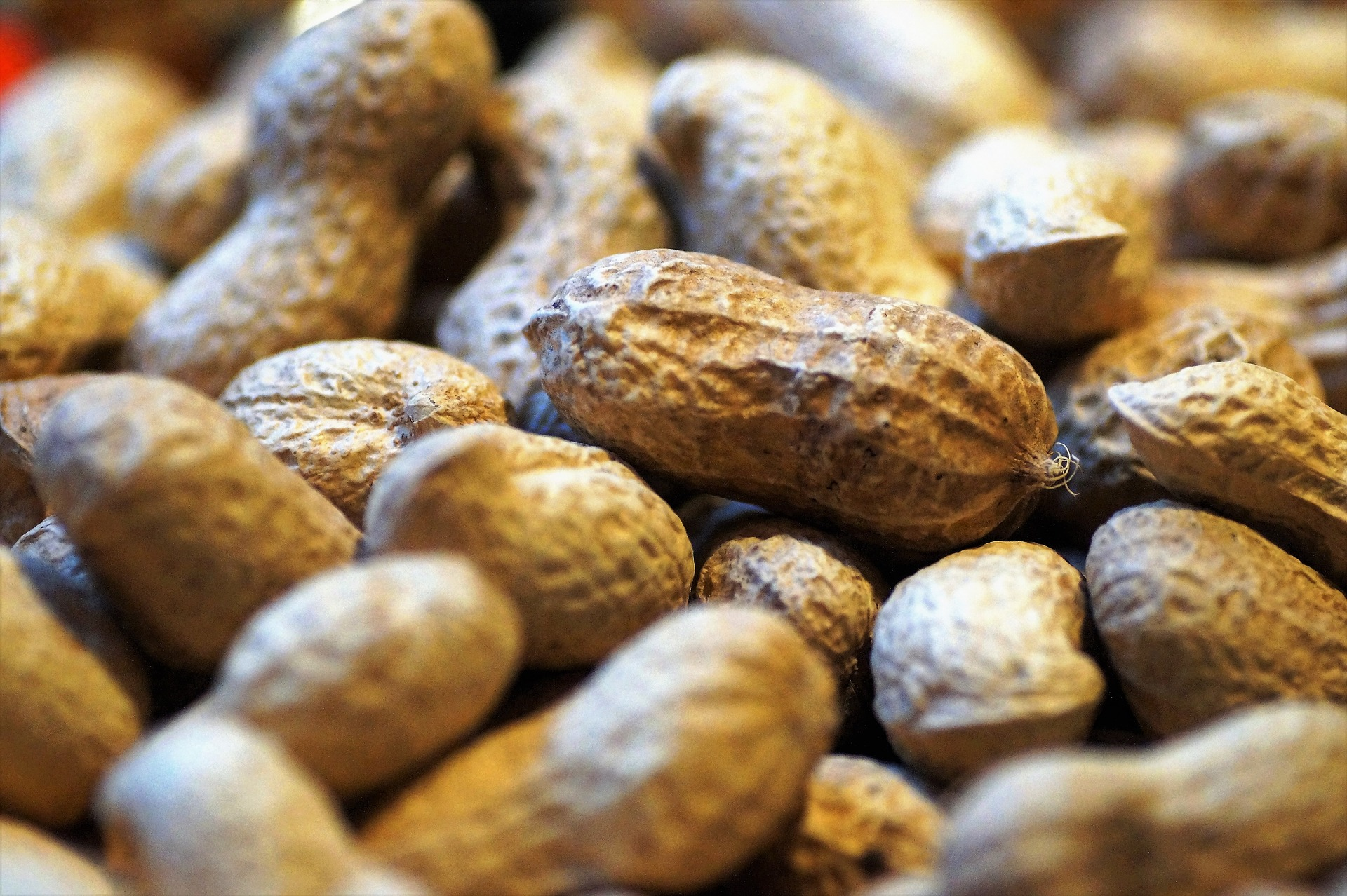 Unshelled Peanuts